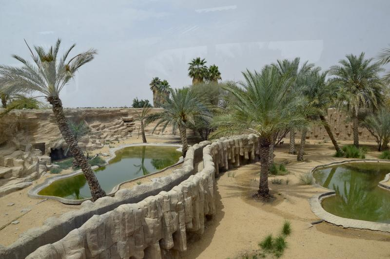 ZOO Al Ain