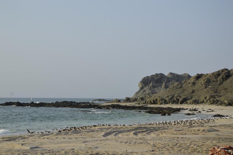Samotne plaže