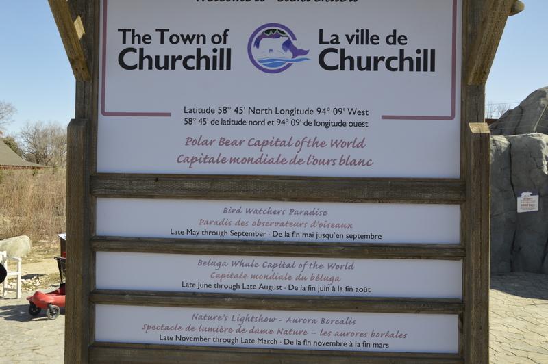 Churchill town, ZOO