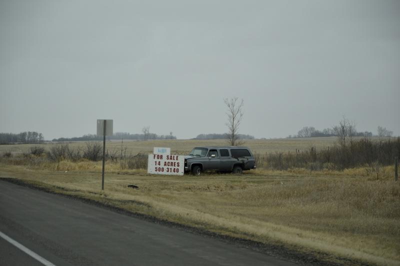 Avtomobile, katere hočejo prodati, zapeljejo k cesti.