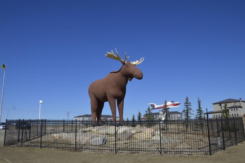 Največji los v Kanadi