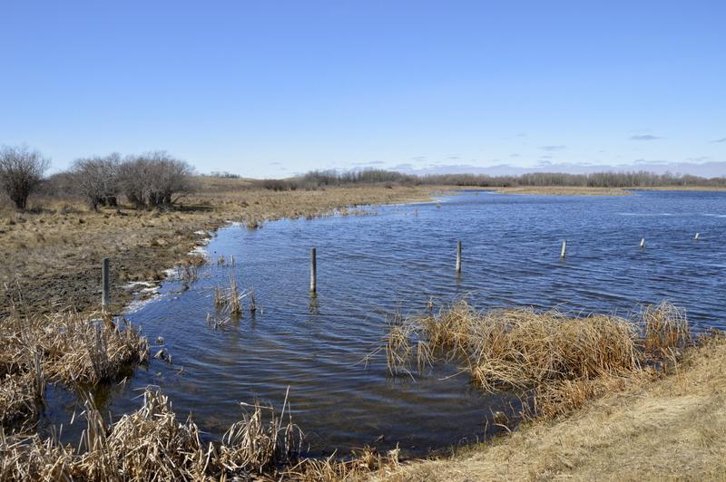 """Ob poti so nas ves čas spremljala polja in mala """"jezerca"""""""