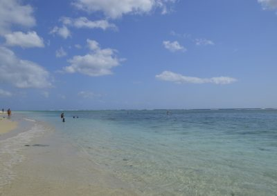 Plaža Flic en Flac