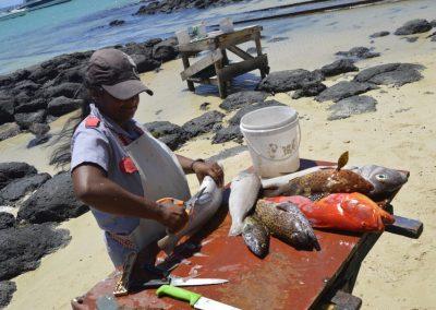 Prodaja rib, Cap Malheureux